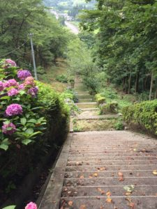 神社入口から下の階段の道をみたところ