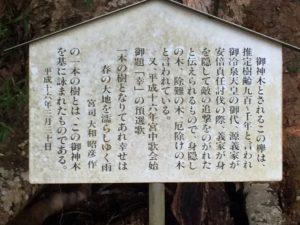 ご神木の説明看板