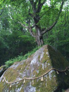 丹内山神社ご神体