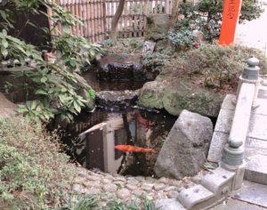 門を過ぎたところの池