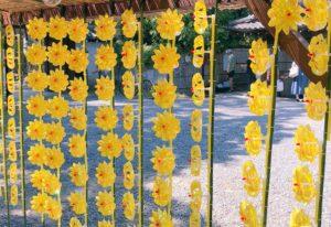 黄色の風車